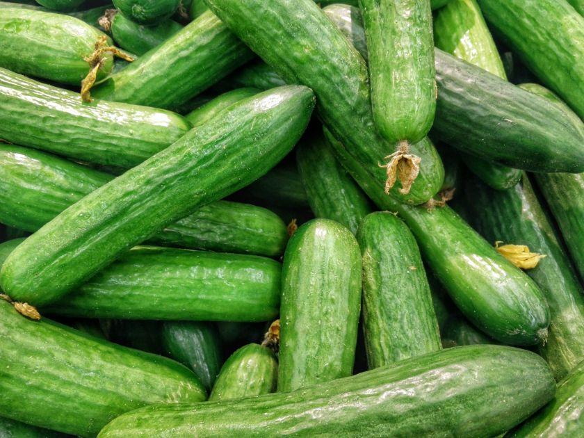 Varieties of Cucumbers