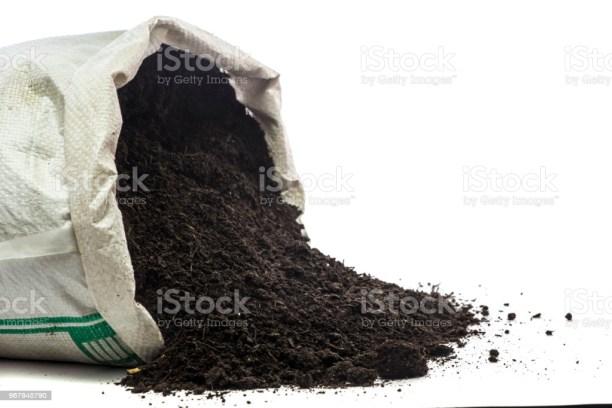 Potting Soil Wet In Bag