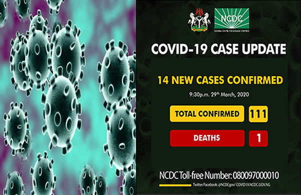 14 New Cases of Coronavirus Confirms In Nigeria