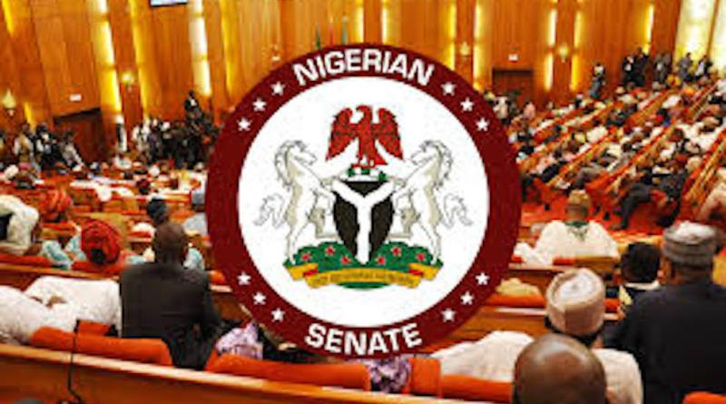 Senate To Remove Immunity From President Buhari