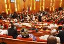 Niger Assembly impeaches majority leader, deputy