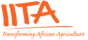 IITA launches Agribusiness education software for secondary faculties in Oyo state