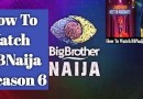 Where To Watch BBNaija 2021 Season 6 Live Streaming, The Housemates, Premiere Opening Show ( Video)