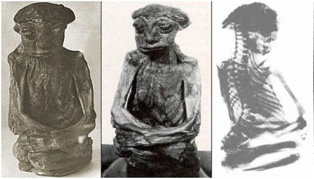Dưới đây là nhiều bức ảnh đã biết và chụp X-quang về Xác ướp được tìm thấy ở Dãy núi San Pedro