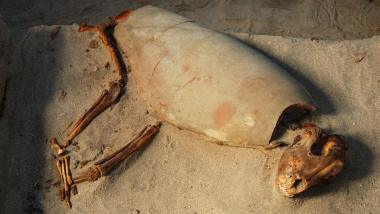 2,000-Year-Old Egyptian Burial Site