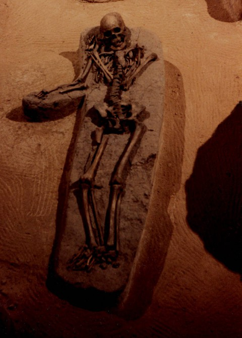 Un esqueleto fotografiado antes de ser enterrado nuevamente, en Moundville, Alabama, 1987. Este no era un «gigante».
