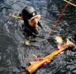 Buzo de la excavación en Florida emerge sosteniendo un hueso de un mastodonte.