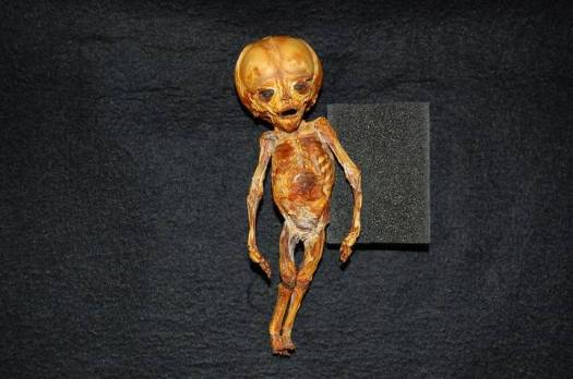Resultado de imagen de ser momificado Chucunaque