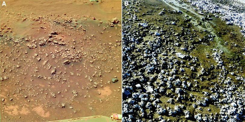 hot spring on Mars