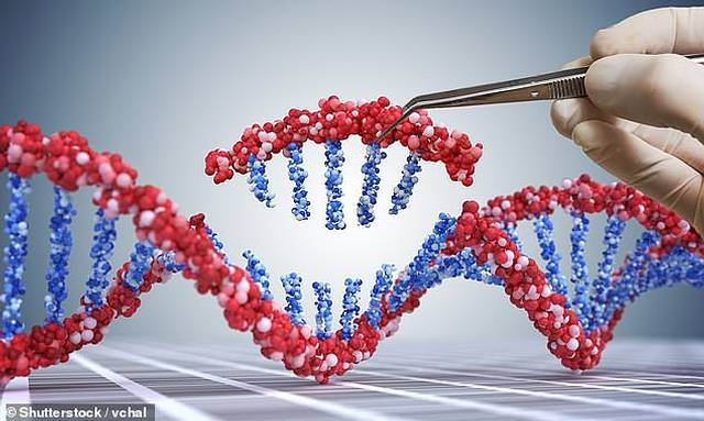 CRISPR Cas-9.