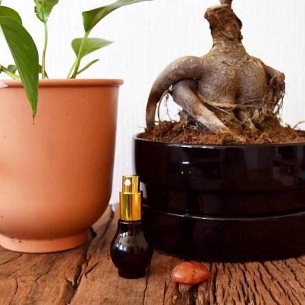 Aries perfume DIY