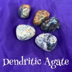 tumbled dendritic agate crystal