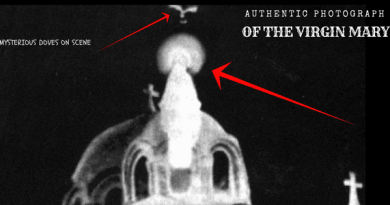 "EVEN THE TELEVISIONS HAD TO SAY ""YES THIS IS THE VIRGIN""…THE UNPRECEDENTED VISUAL EVIDENCE OF THE VIRGIN MARY"