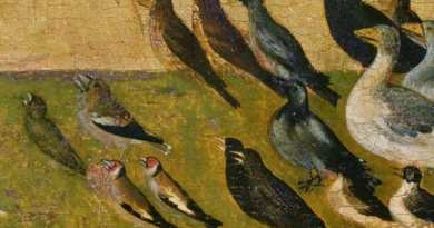 "St. Francis and the sermon to the birds….And all the birds rose in the air ""with marvelous chants""… A miracle for the animals who are on this earth as it is in Heaven"