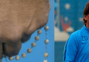 Always at top in Heaven but Today Our Lady and the Rosary Rise To the Top of the Sports World …Croatia's World Cup soccer coach carries rosary at all times even in difficult times.