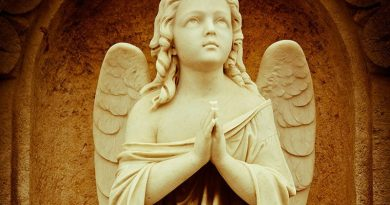 One Thing Your Guardian Angel Wants You To Do – Fr. Mark Goring – Consecrate yourself today to your Guardian Angel and protect your life in difficulties. Here is how…