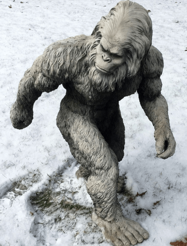 bigfoot-1620140_1920