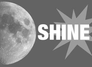 Information About SHINE Records