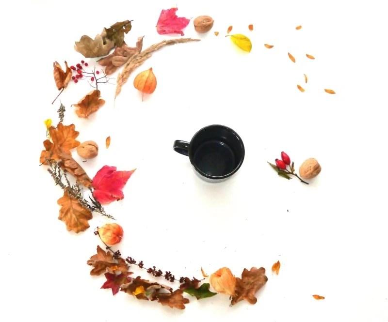 autumn themed flatlay.jpg
