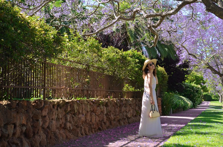 SanDiego-Jacarandas-Spring-Spring2017-JacarandaSeason-SanDiego-SanDiegoStyleBlogger-KarlaVargas-MyStylosophy-WhiteDress-SpringDress