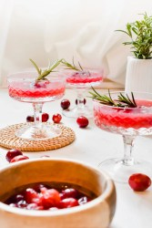cocktail-canneberges-gingembre