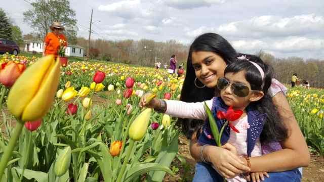 Mom - Sindhuja Kumar