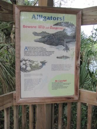 Florida Feb 2012 116