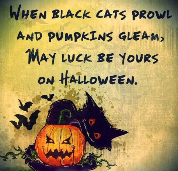 Happy Halloween 2018 Quotes