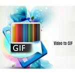Video to Gif License Key