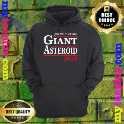 Womens Funny 2020 Before Election Day Asteroid Just End It Already hoodie