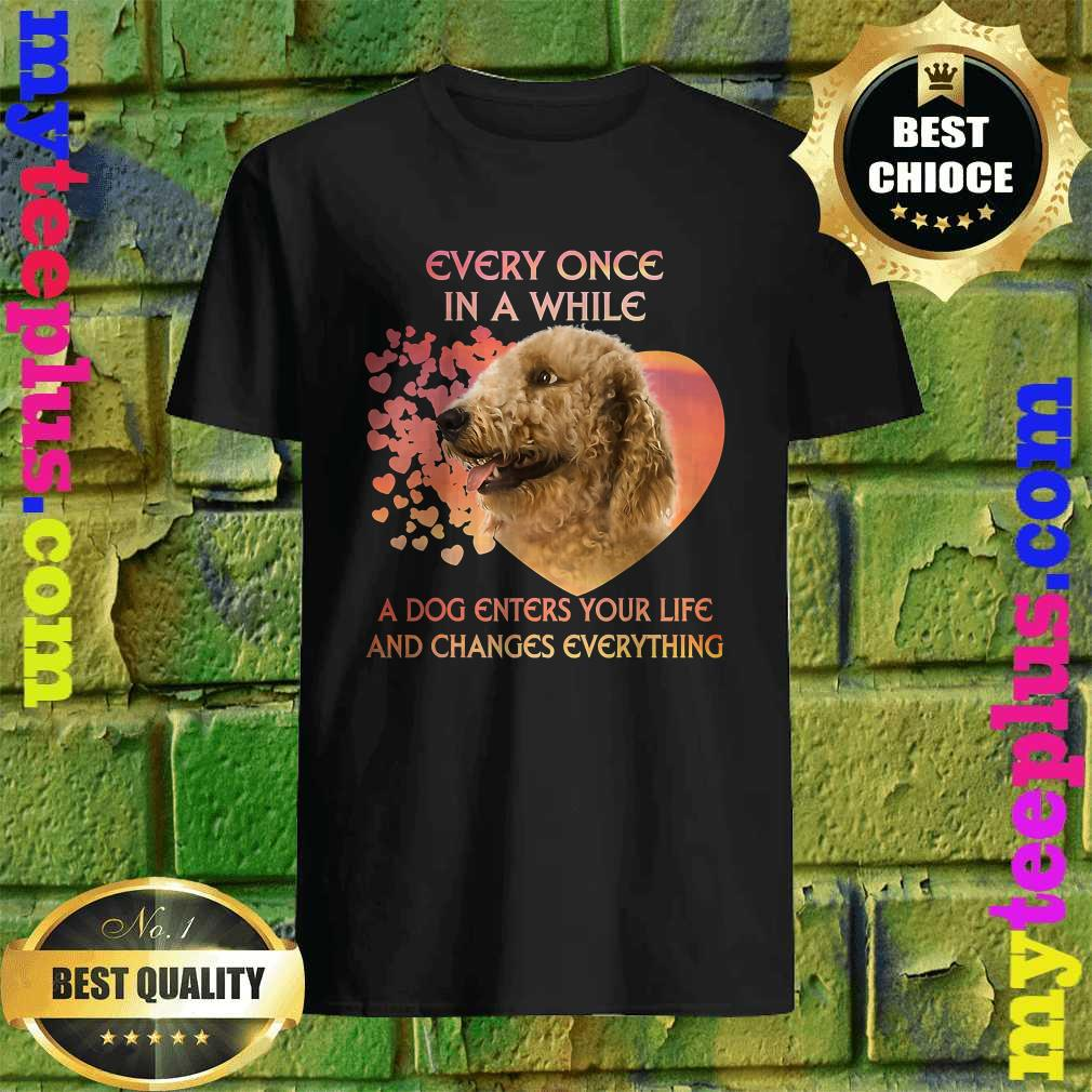 Every Once In A While A Dog Enters Your Life Goldendoodle T-Shirt