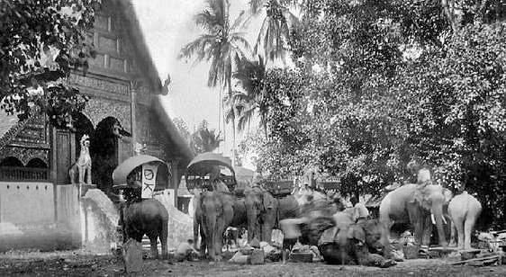 circa 1894. Yunnan merchant caravan in Chiang Rai.