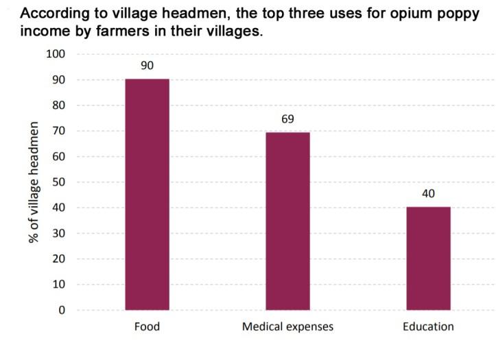 Opium Poppy Statistics
