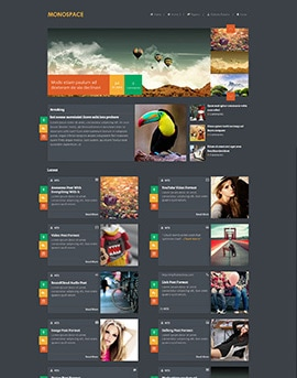 Wordpress Themes Monospace