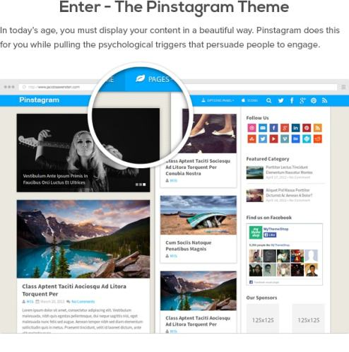 Wordpress Themes Pinstagram