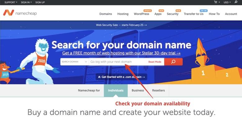 check-domain-disponibilità-1