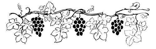 The Power of Translation: the Fox and the Grapes (2/2)