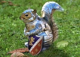 writing prompt 1 squirrel