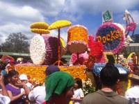 flower-floats-16.jpg