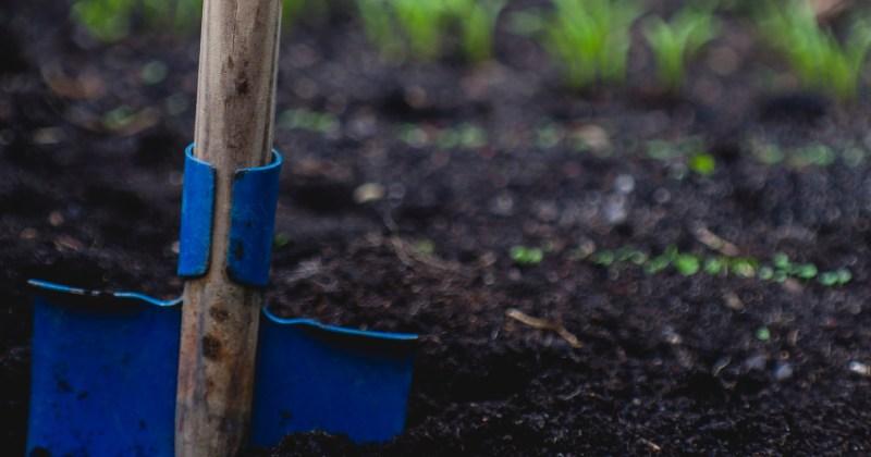 blue shovel in dirt