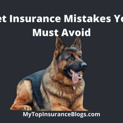 Top pet Insurance Mistakes