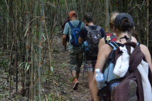 Thailande trek dans la jungle