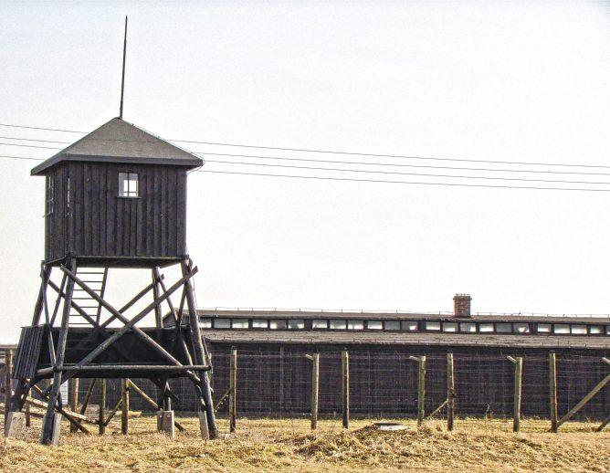 14 Majdanek
