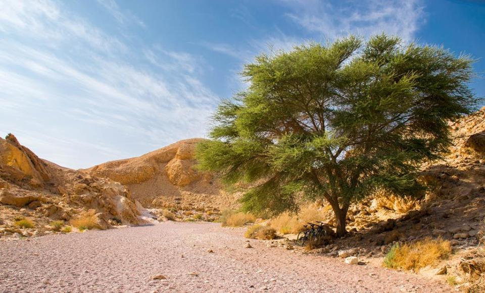 Eilat na weekend