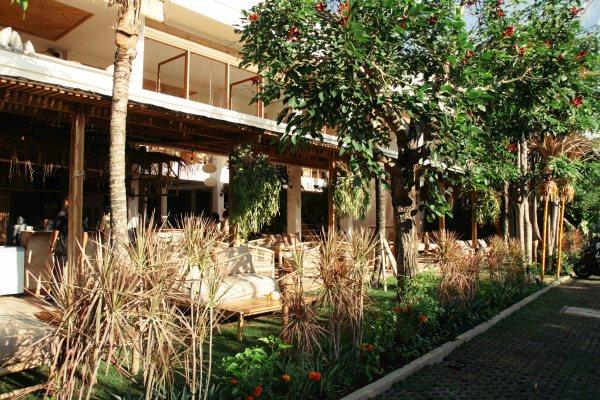 Coffee & Coconuts Bali