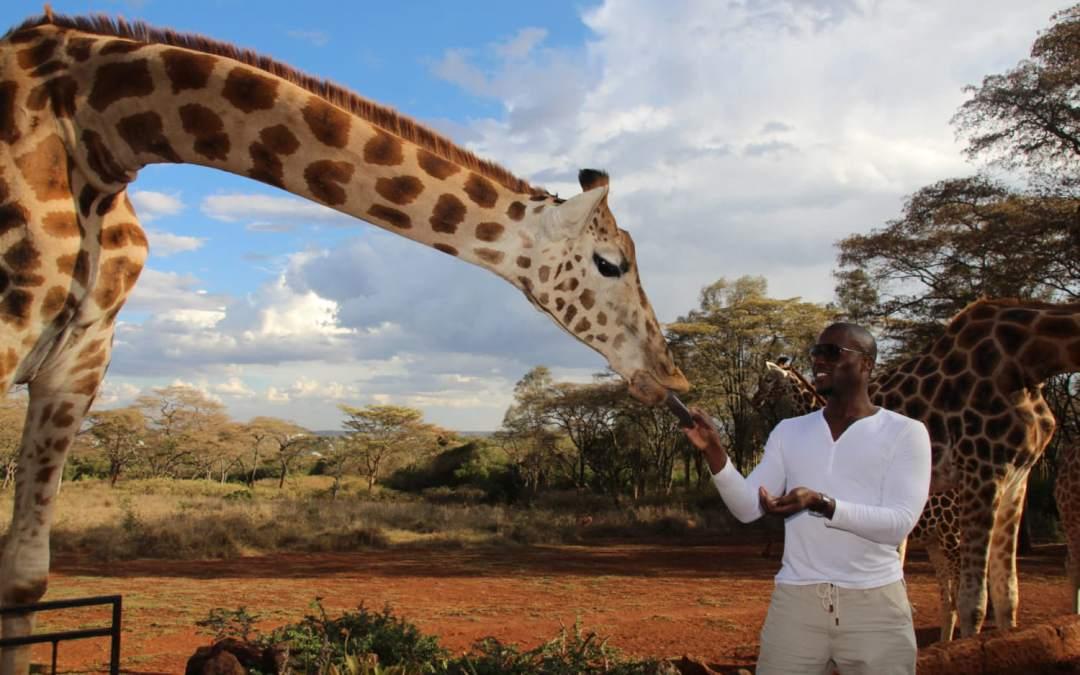 Visiting Giraffe Manor