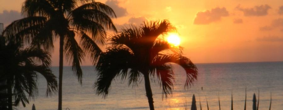 Cayman Island 110