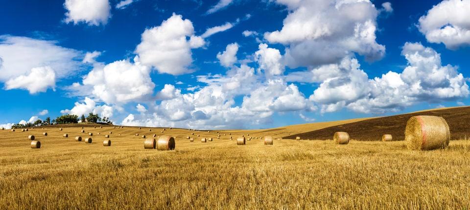 Tuscany Weather Forecast