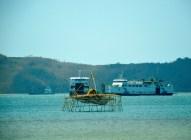 Fishfarm and ferries...