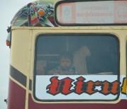 Little bus traveller...